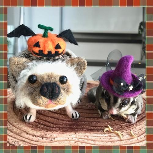 ハロウィン小動物用帽子【おばけかぼちゃ】
