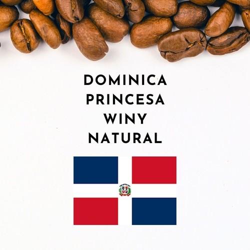 【1月限定】Dominica Princesa Winy -Natural- (ドミニカ プリンセサ ワイニー ナチュラル)100g