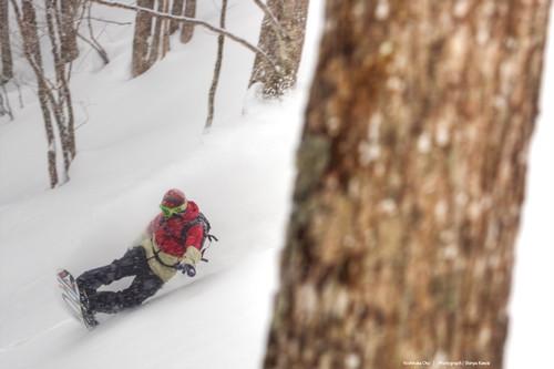 2020年1月25日(土)26日(日)PSフリーライディングスクール・岐阜県ほおのき平スキー場開催へ変更