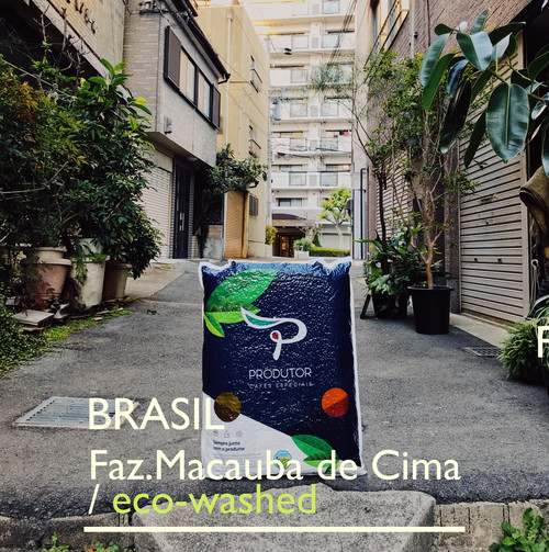 BRASIL【washed】 -中深煎- 200g