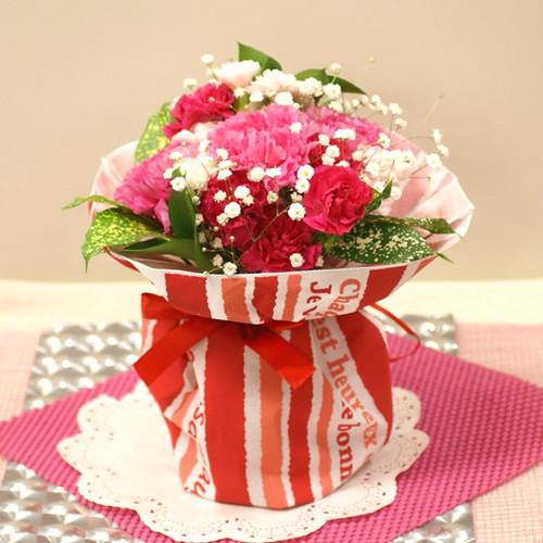 【送料無料】【母の日】【生花・花束】そのまま飾れる!カーネーションのスタンディングブーケ FL-MD-301