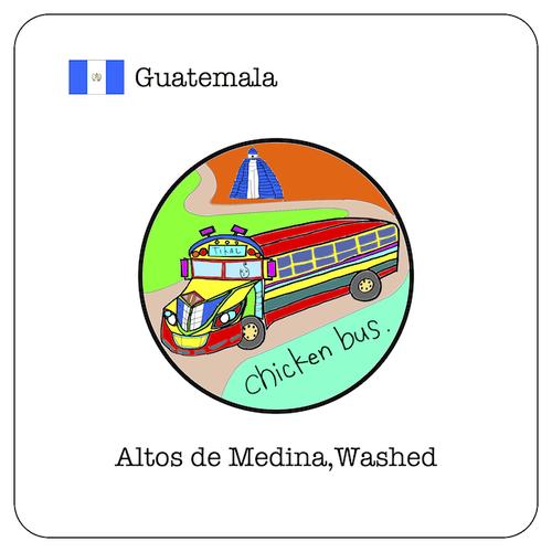 グアテマラ アルト・デ・メディナ ウォッシュド / 100g