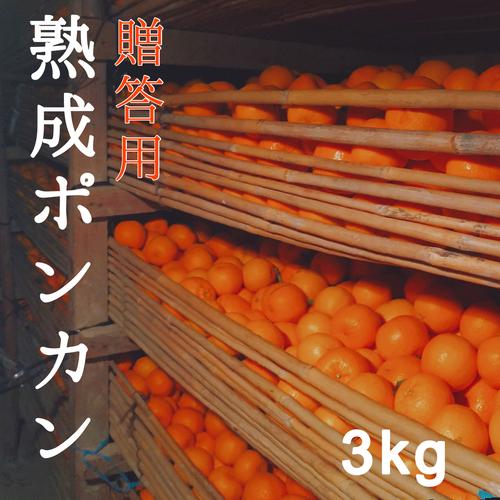 送料無料 熟成ポンカン贈答用3kg  熊本県産