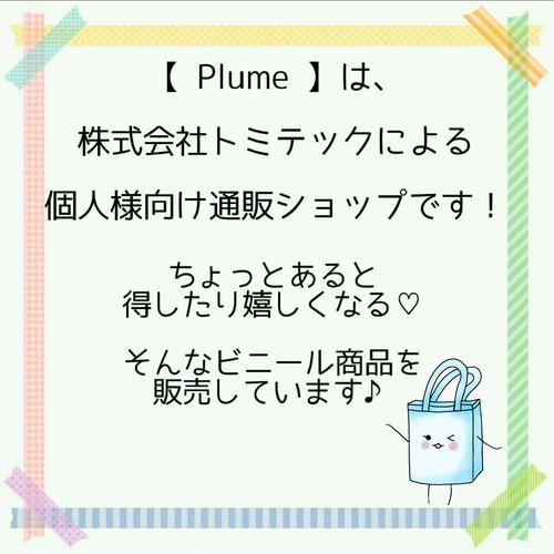 ご挨拶。初めまして!【 Plume 】です♪