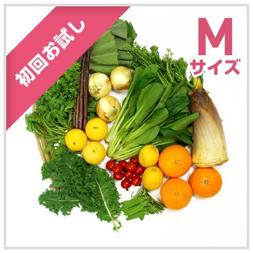 【初回お試し】朝採れ野菜(M)10~12種類のお野菜セット