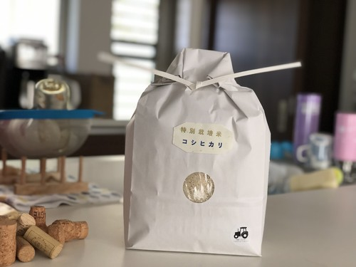特別栽培米 コシヒカリ 3㎏