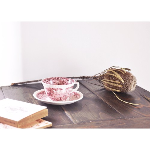 【 MASON'S VISTA tea cup & soucer 】England / antique