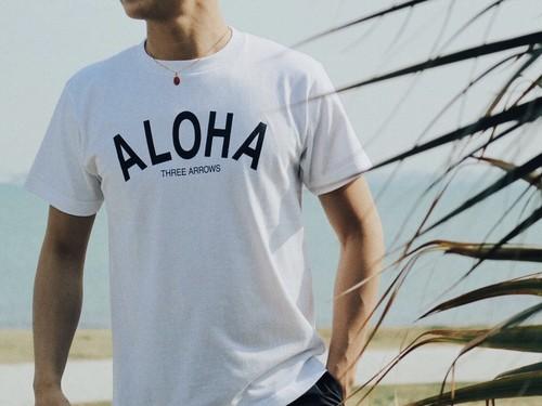 【5/22 21:00販売開始】ALOHA Tシャツ(white)