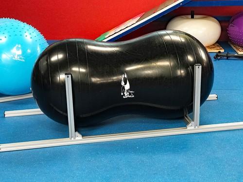 ピーナツボールホルダー(K9 Flexiness Fitnessオリジナル)