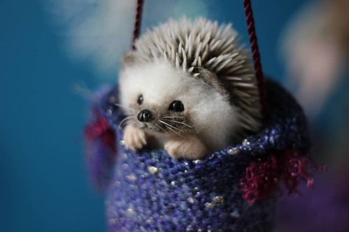 Dangling Hedgehog