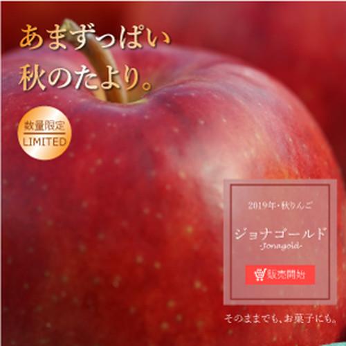 【贈答用】りんご 1段(ジョナゴールド)