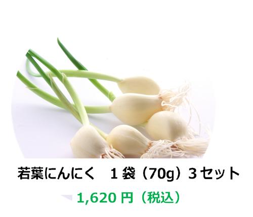 【埼玉県産】若葉にんにく 1袋(70g)×3セット
