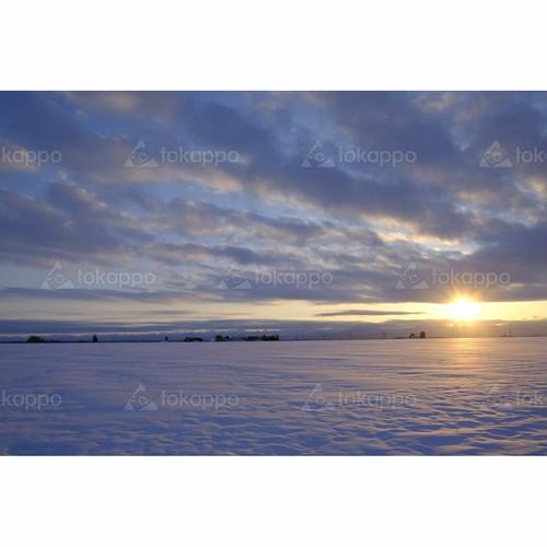 雪原の夕日