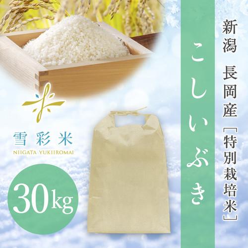 【雪彩米】長岡産 特別栽培米 令和2年産 こしいぶき 30kg