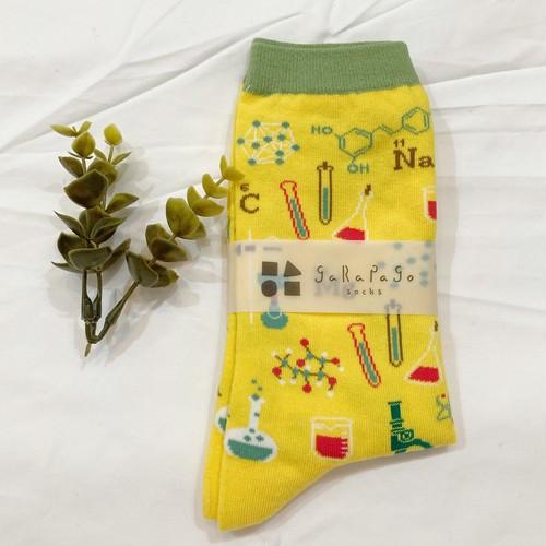 【select】garapago socks(化学)