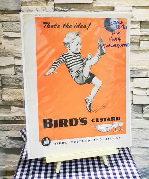 【Vintage品】雑誌切り抜き広告 2枚セット BIRD'S CUSTARD 1947年 イギリス Picure Post誌 /0234y