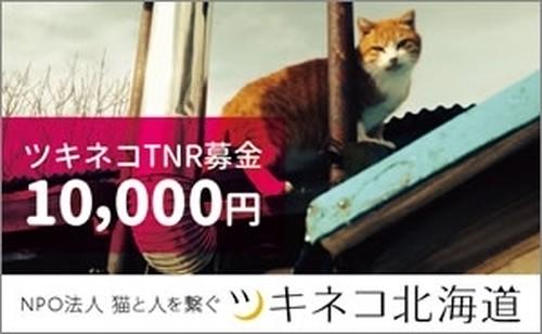 TNRプロジェクト募金<10,000円>