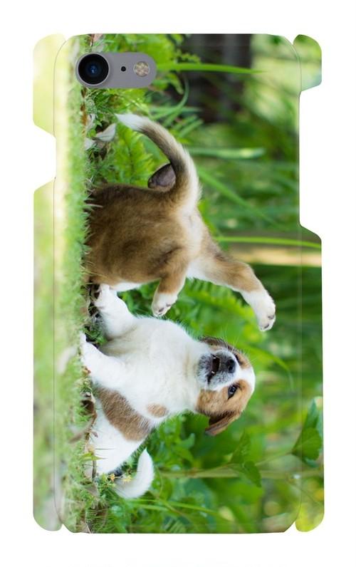 スマホケースiPhone7「じゃれる子犬」(送料無料)