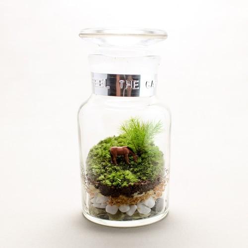 苔のテラリウム 牧場 馬のいる風景 薬瓶120ml