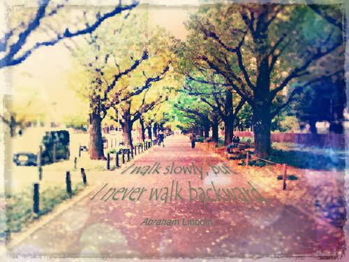 ポストカード『私の歩みは遅いが、歩んだ道を引き返すことはない。』
