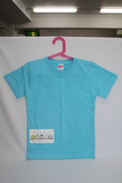 小鳥さん メロディ ポケプリ Tシャツ (水色)