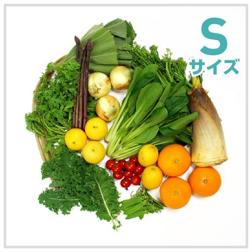 朝採れ野菜(S)6~8種類のお野菜セット