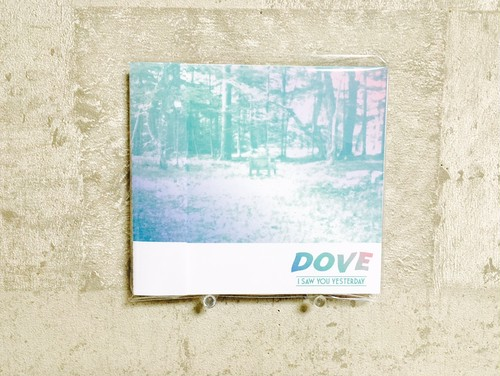 I Saw You Yesterday / Dove