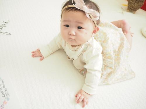 再販 新生児からヘアバンドタイプグログランタレありツインリボンワンサイズクリップ ハーフバースデー