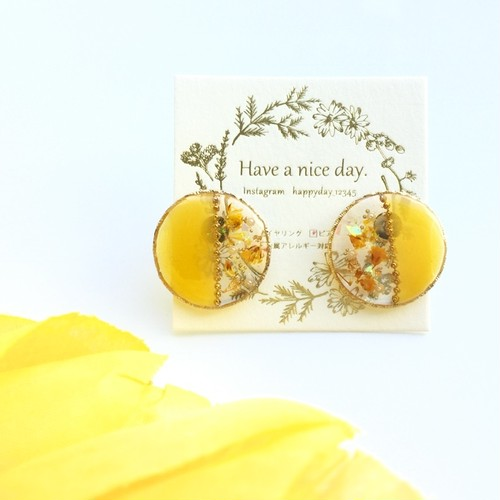 Have a nice day ピアス/イヤリング