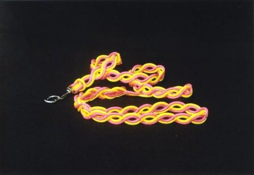 アイロープ 小型~中型犬用 カラフルパラコードリード (2色)
