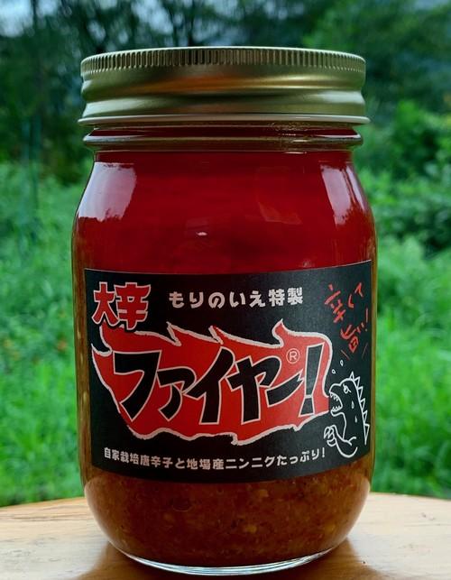 大辛ファイヤー!(大瓶)