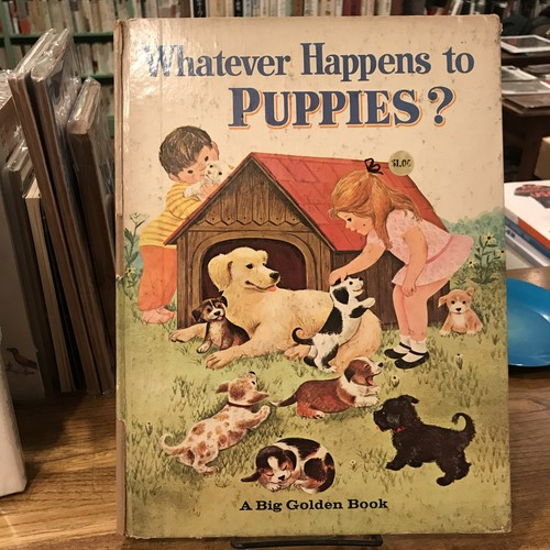 Whatever Happens to Puppies? / Bill Hall, Virginia Parsons