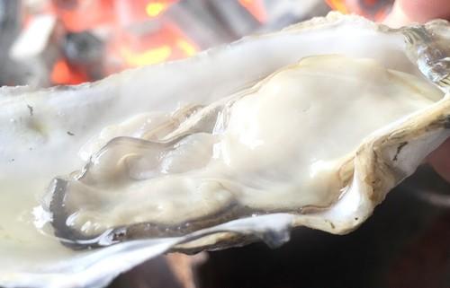 【活】兵庫県室津産 牡蠣 800g
