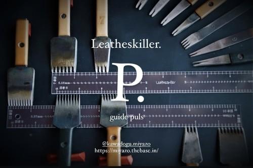 Leatheskiller.guide Plus レザスキポイントガイドプラス