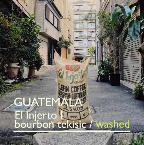 GUATEMALA 【El Injerto Ⅰ】 -中煎- 200g