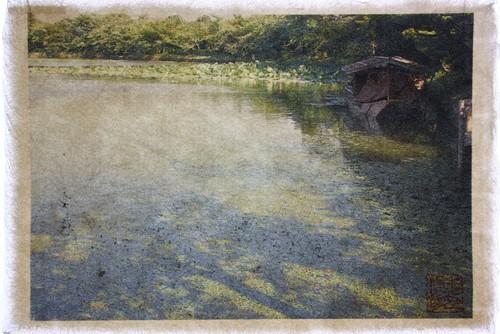 北嵯峨 大沢の池、京都 Osawa Pond, Kitasaga, Kyoto  WASHIGRAPHY Art