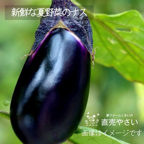 新鮮な夏野菜 : ナス 約350g 8月の朝採り直売野菜 8月29日発送予定