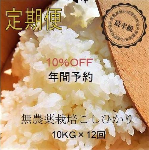 無農薬10kg×12回〈10%OFF〉定期購入〈元年産〉南魚沼産コシヒカリ