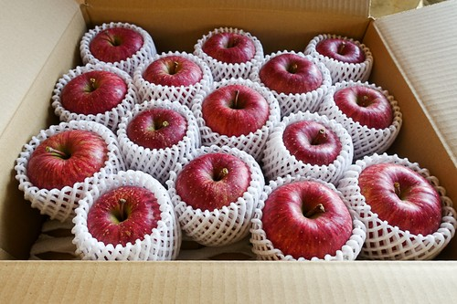 長野県産りんご サンふじ 家庭用5kg箱