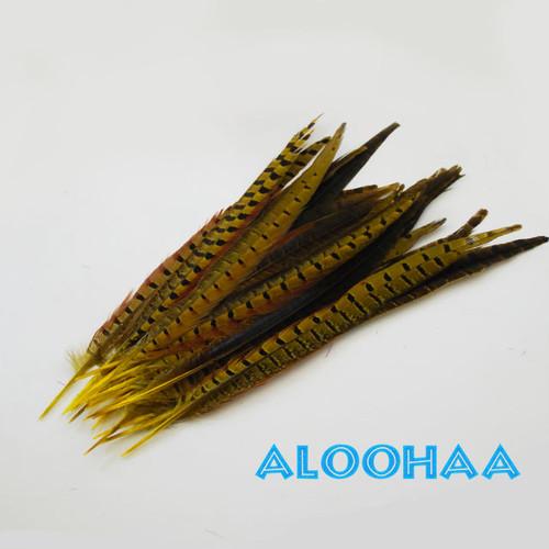 ロングフェザー 【イエロー】#30-003YE30-CT  30-35cm 5本 タヒチアン 衣装 材料 キジ 染め 羽根