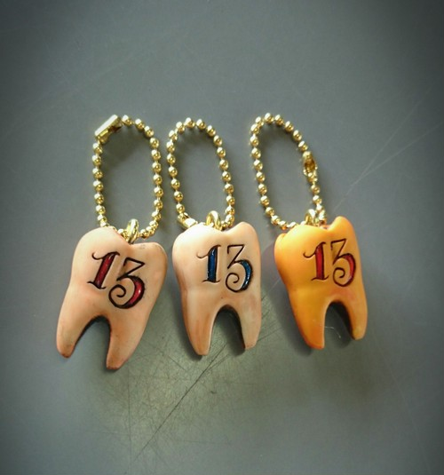 tooth key chain 「13」