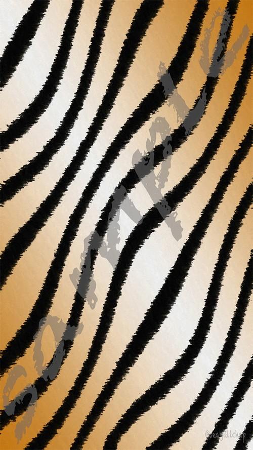 13-c-1 720 x 1280 pixel (jpg)