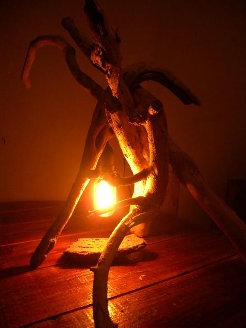 ◆こだま◆流木照明・ルームランプ