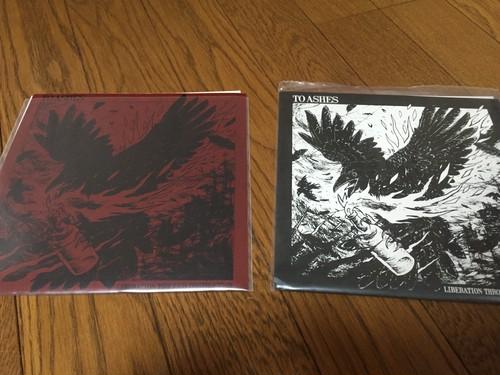 "To Ashes - Liberation Through Destruction7"""