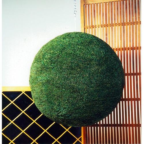 杉玉(70センチ玉)