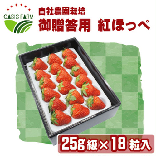 【高糖度イチゴ 糖度15度~ 紅ほっぺ】25g級18粒詰め合わせ【ご贈答用化粧箱入り】