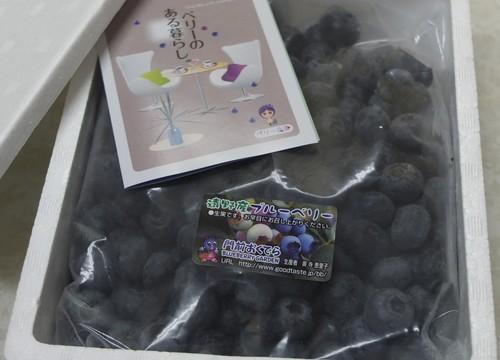 大粒冷凍ブルーベリー 800g (400g×2袋)