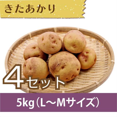 【じゃがいも】きたあかり 5kg(L〜Mサイズ)×4セット