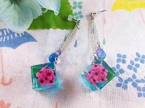雨の中で咲く紫陽花キューブが揺れるピアス(赤紫)
