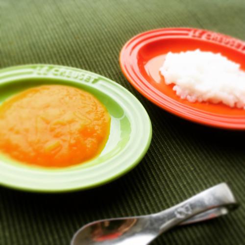ベビーフード 初期 10食セット(おかず+おかゆ)